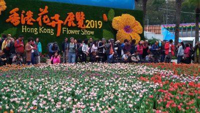 Китайские сады в Парке Виктория